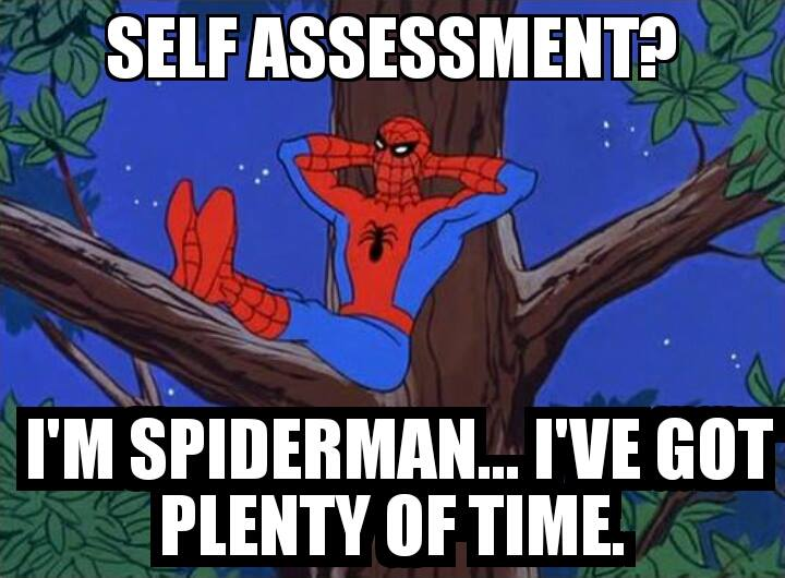 selfassessment spiderman